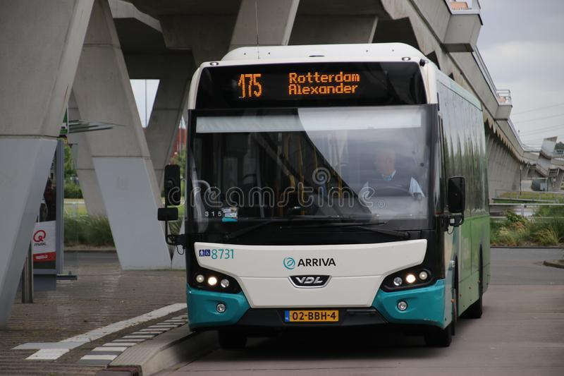 White green bus of Arriva number 8731 on line 175 heading to Rottedam Alexander in the Netherlands at Metro Station Nesselande. royalty free stock photo