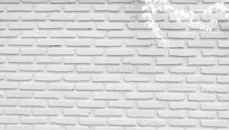 White And Grey Brick Wall Texture Background With Space For Text White Bricks Wallpaper Home Interior Decoration White Leaves Stock Image Image Of Backdrop Design 129785549