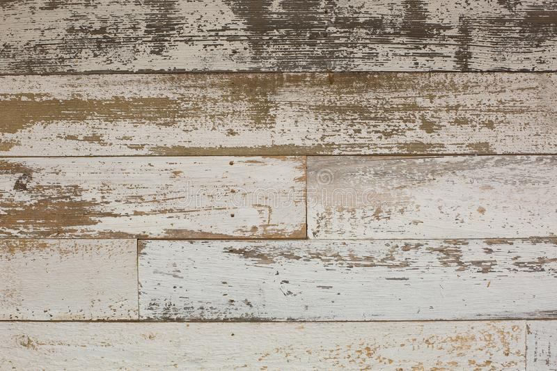 White/grey wood texture background with natural patterns. Floor. White/grey wood texture background with natural patterns. Abstract backdrop stock images