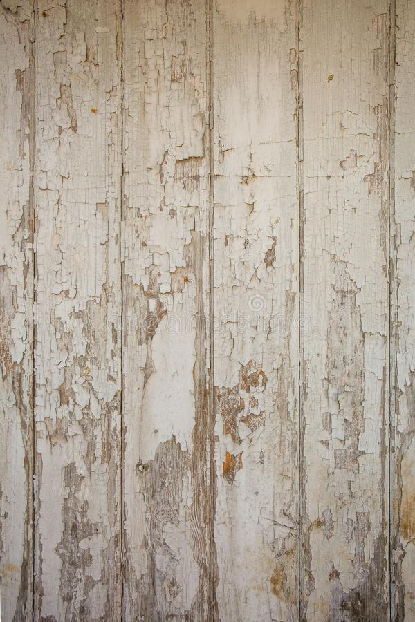 White/grey wood texture background with natural patterns royalty free stock images