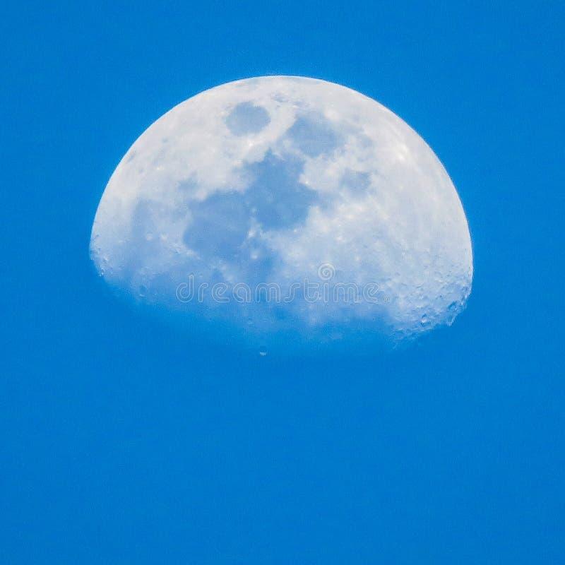 White Half Moon royalty free stock photos