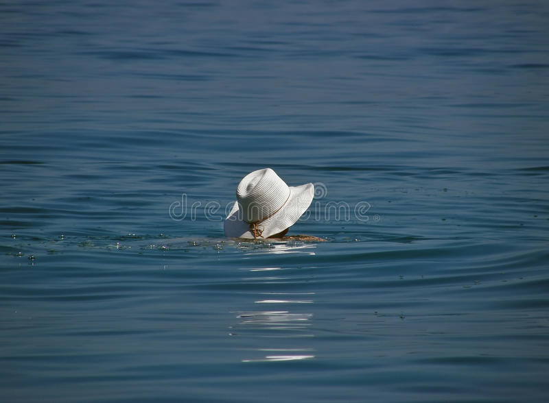White hat in the sea royalty free stock photo