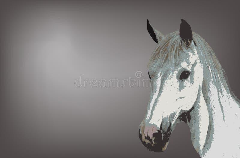 White horse stock illustration