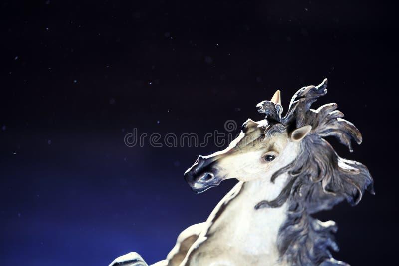 White horse figure dust. Day light stock image