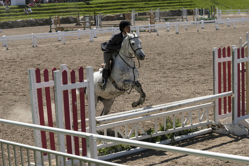 White horse jumping. Bromont june 14, 2015 front view of girl with a white horse making a jump during competition stock photo