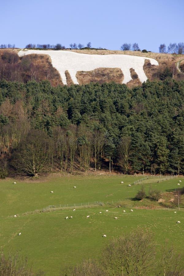 White Horse at Kilburn - Great Britain