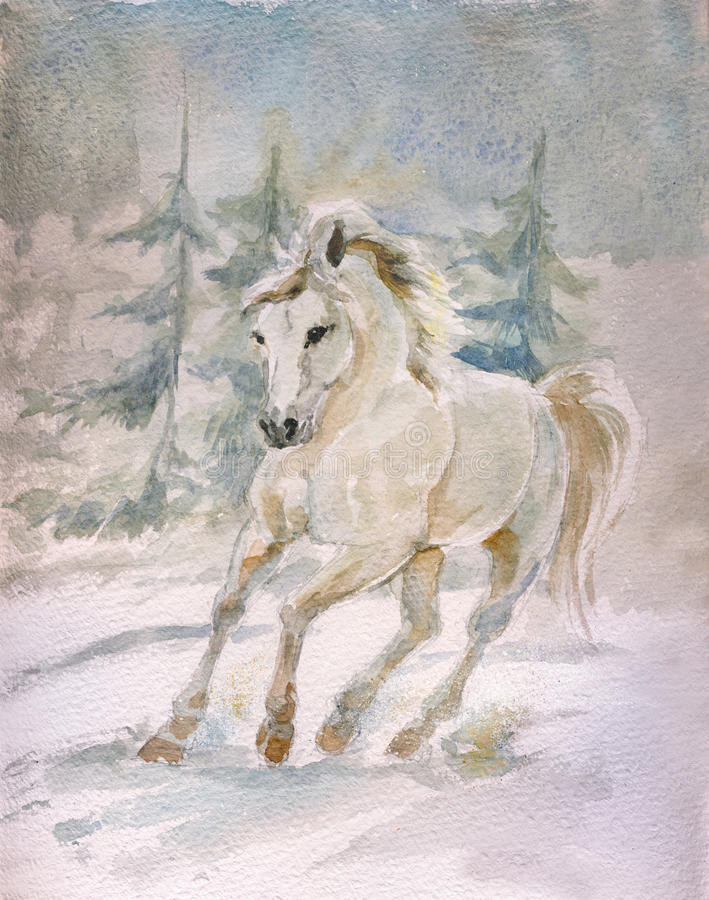 White horse. Running through winter field, watercolor hand drawing
