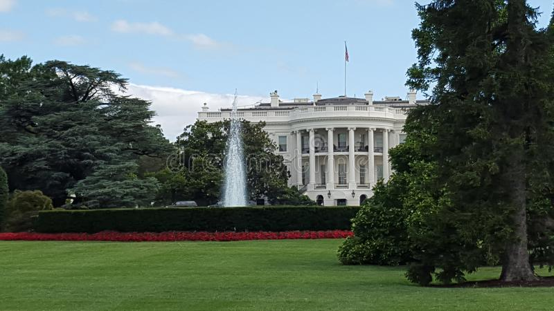The white house and red flowers and fountain stock photography