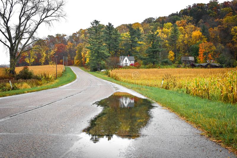 White House Reflected in a Rain Puddle on the Road in Fall stock photo