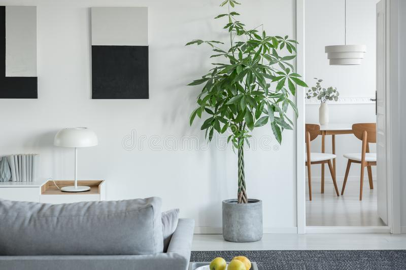White industrial lamp on console table in bright living room interior with plants and grey comfortable sofa royalty free stock photo
