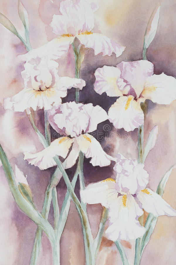White Iris Watercolour. Original watercolour, collection of white irises vector illustration