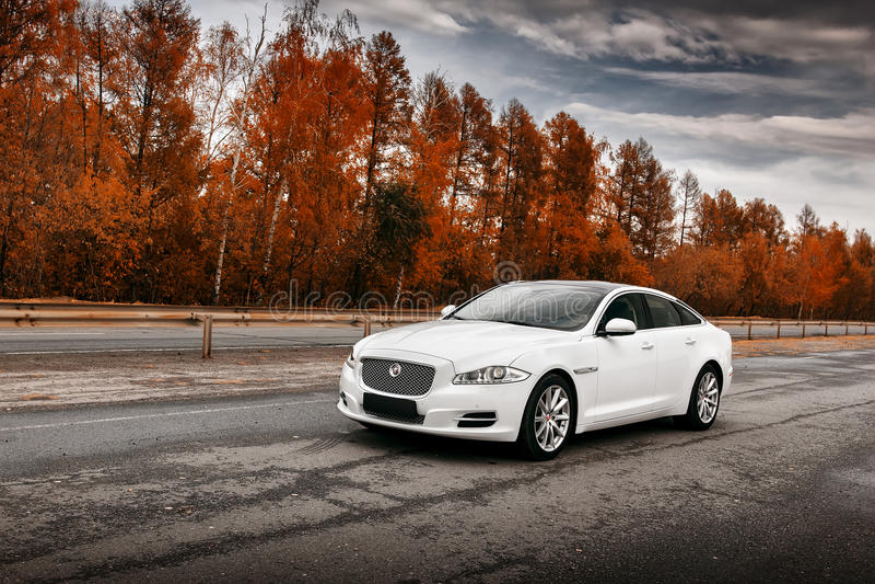 White Jaguar XJ car stand on wet asphalt road at daytime royalty free stock photo