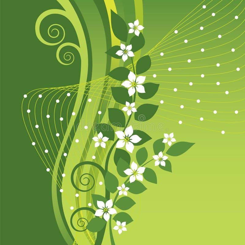 White Jasmine flowers on green swirls background. White Jasmine flowers on green swirls and waves background. This image is an illustration stock illustration