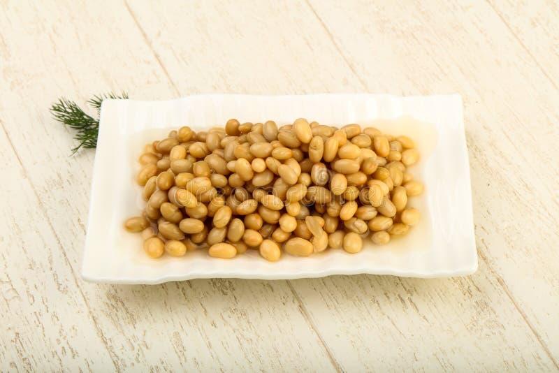 White kidney bean stock images