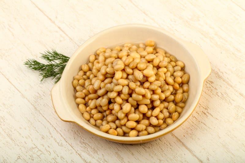 White kidney bean stock photos