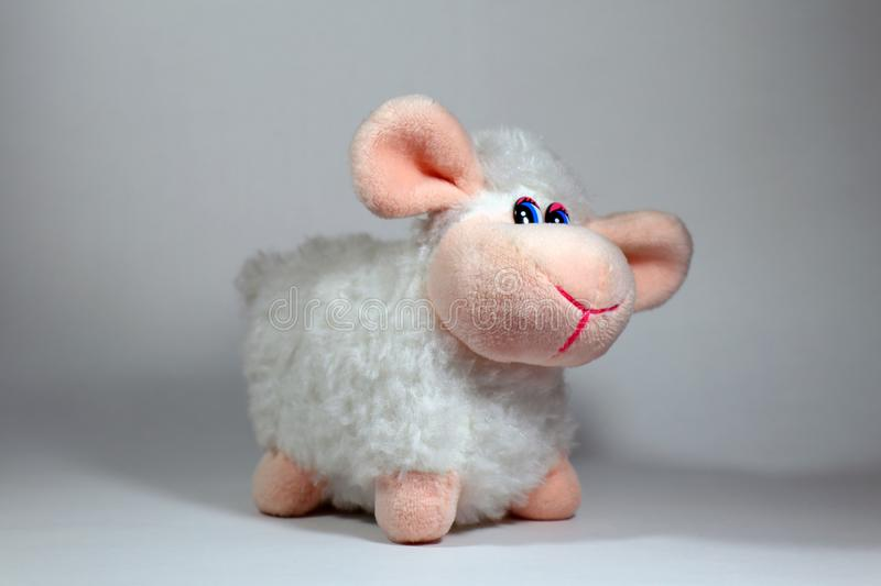 Cute sheep toy isolated on a white background stock photography