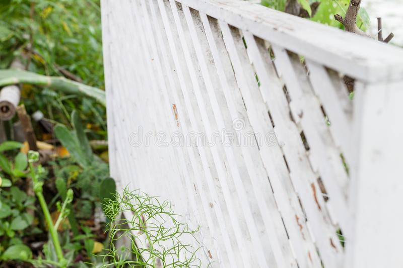 White lattice fence. White lattice fence in the garden stock photography