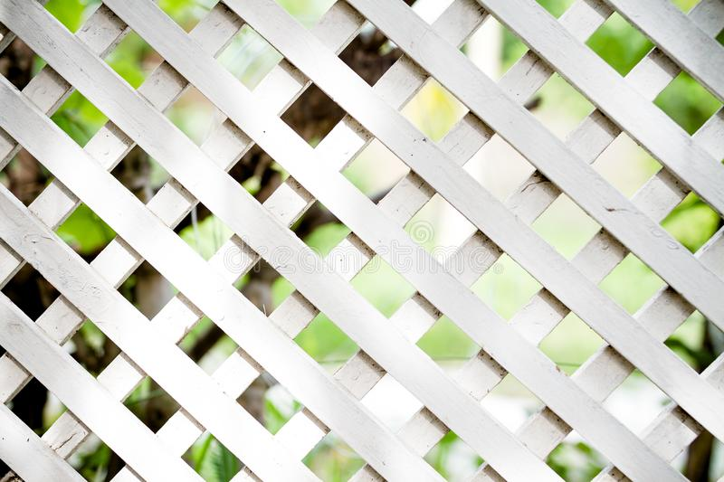White lattice fence. White lattice fence in the garden royalty free stock images