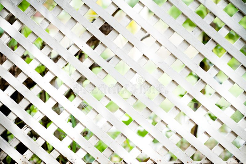 White lattice fence. White lattice fence in the garden royalty free stock image
