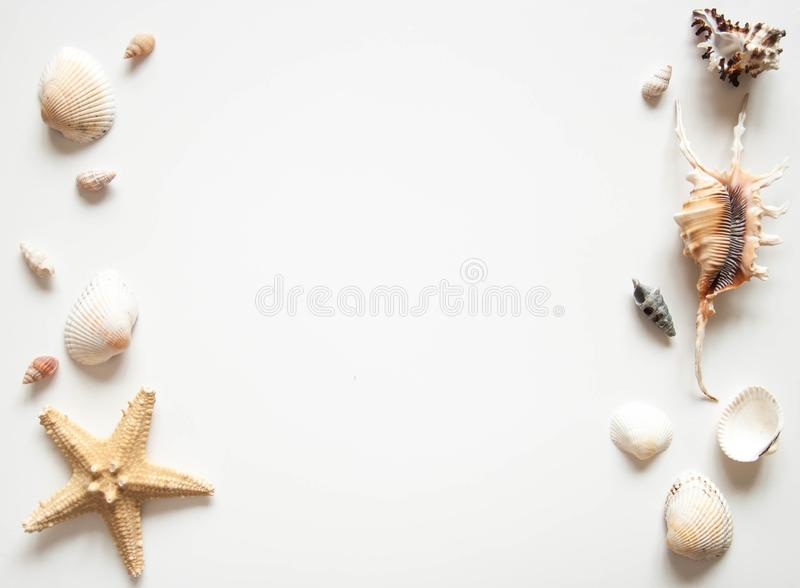 White light background with seashells and sea stars for the site frame for text. Journey to the sea is a memory. stock photography