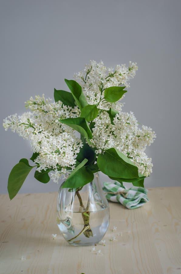 White lilac in a jug stock photos