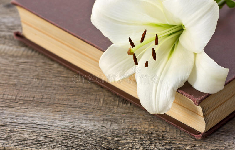 Download White lily on the book stock photo. Image of celebration - 32886320