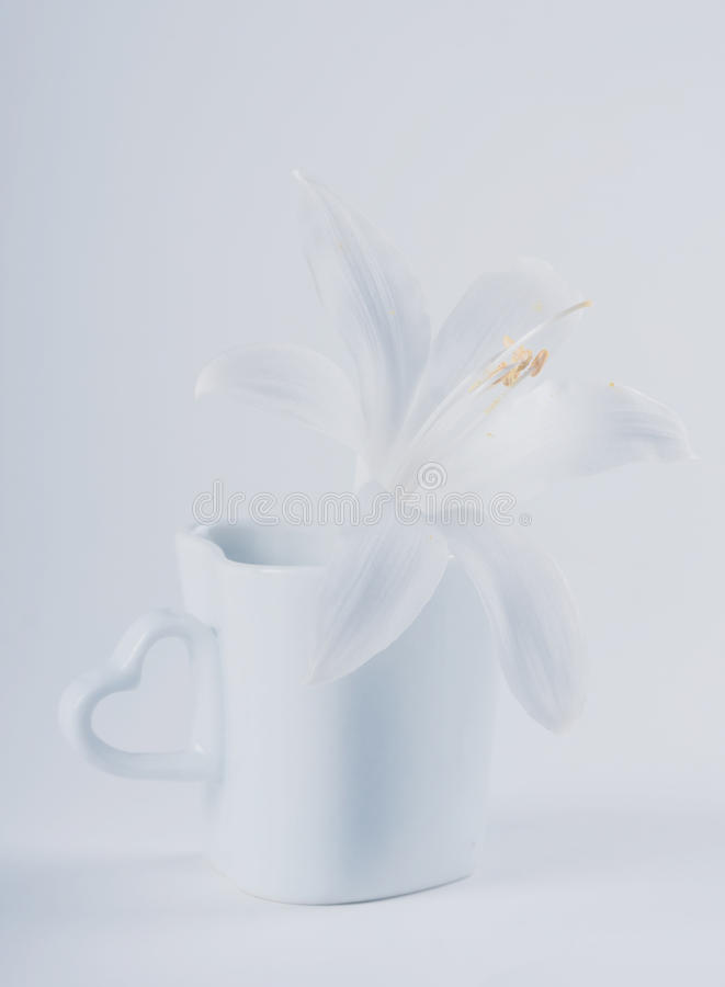 Download White lily stock photo. Image of high, flower, blossom - 34157042