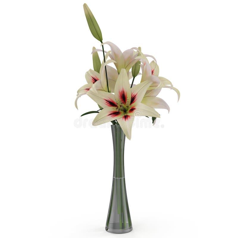 White Lily Vase On White 3d Illustration Stock Illustration