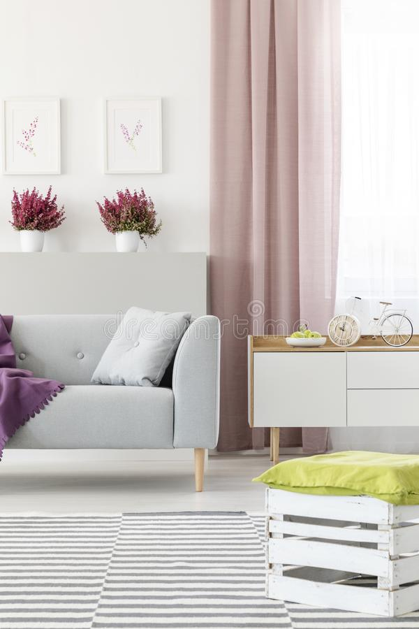 White living room interior with couch with pillow, fresh heathers, posters on wall, dirty pink curtain and handmade. Real photo of white living room interior royalty free stock photography