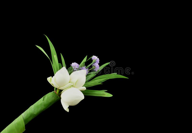 White lotus flower bouquet and pandan leaves to pay respect to Buddhism stock image