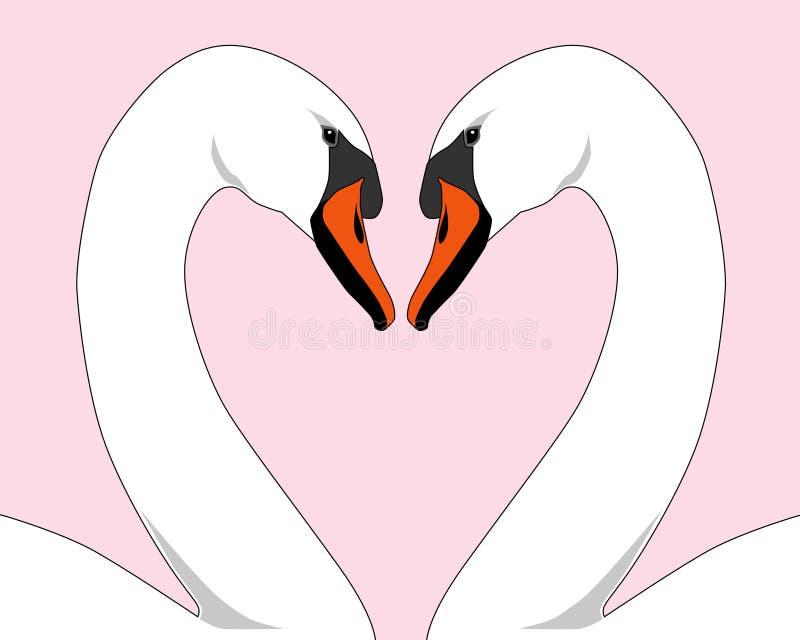 White Love Swans vector illustration