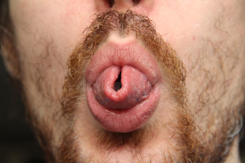 White man with mustache and beard shows tongue rolled up.  stock image