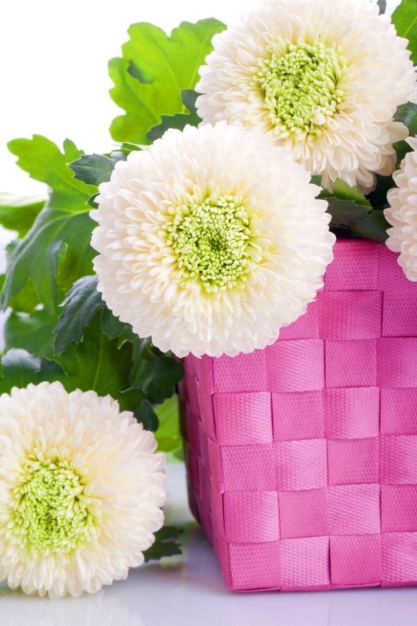 White Marigold flower bouquet
