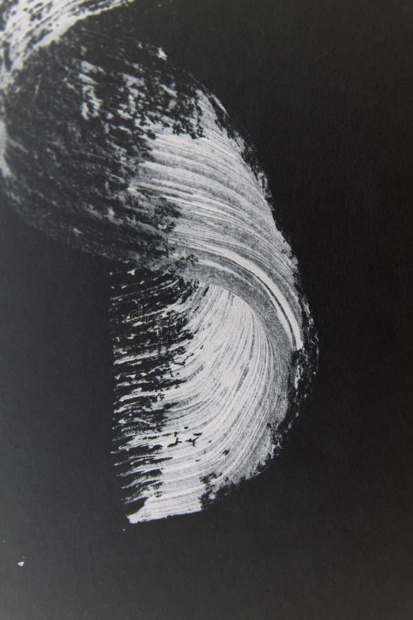 White mascara wave stock images