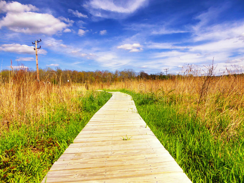 White Memorial Nature Area. A boardwalk through a wetland ecosystem at white memorial conservation center in Litchfield Connecticut on a beautiful spring day stock photos