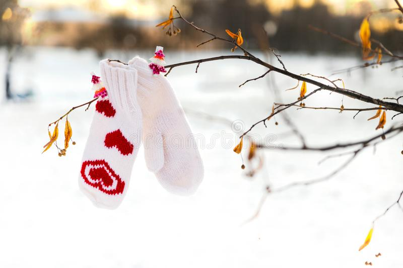 White mittens with red hearts decor are hanging on a tree branch royalty free stock image