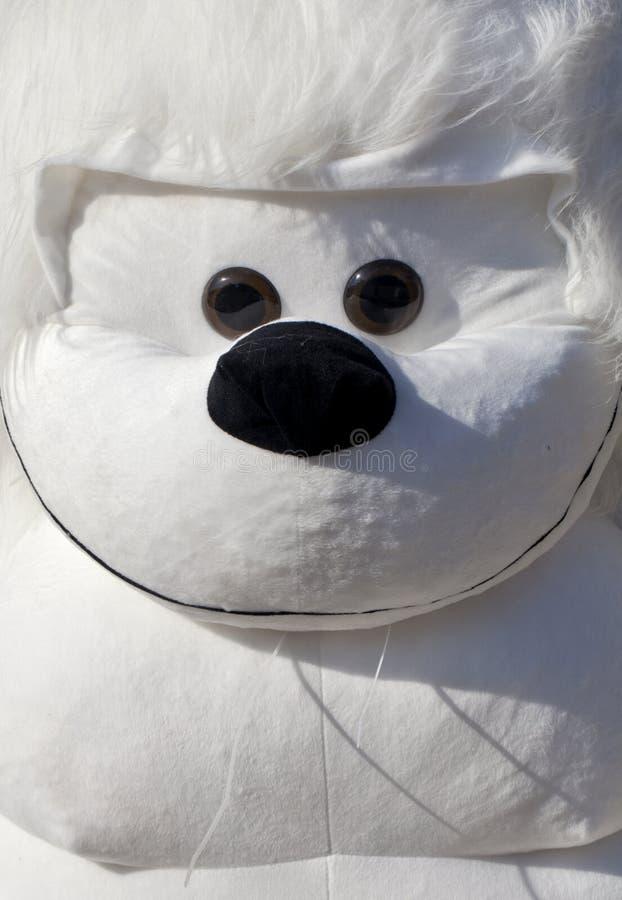 White Monkey Head. Closeup of big white stuff monkey royalty free stock photography