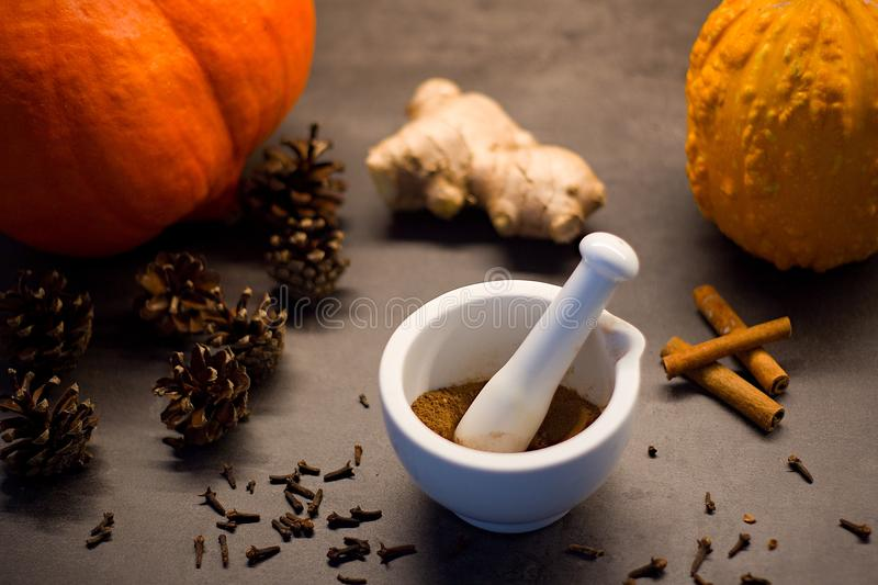 White mortar and pestle with homemade prepared pumpkin spice stock images