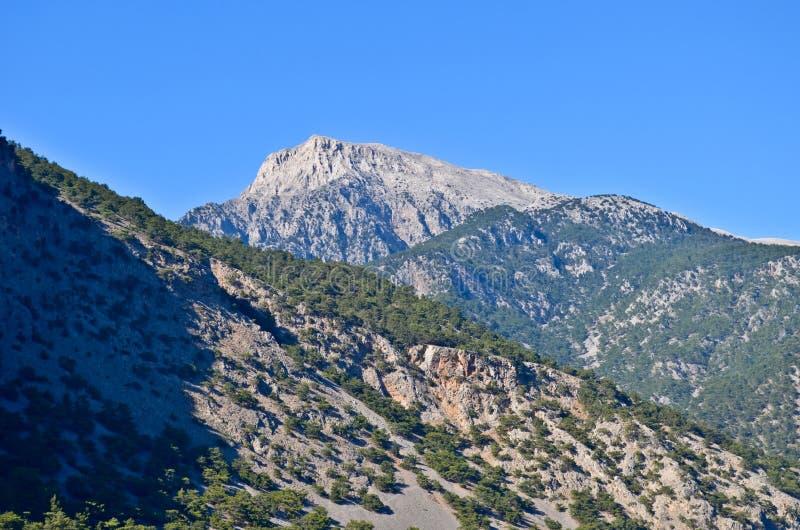 White Mountains royalty free stock photography