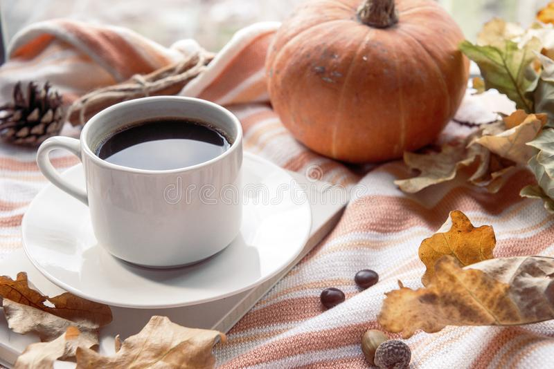 1 white mug of black hot coffee on a saucer on a striped knitted sweater on a background of red pumpkin and yellow fallen autumn stock photography