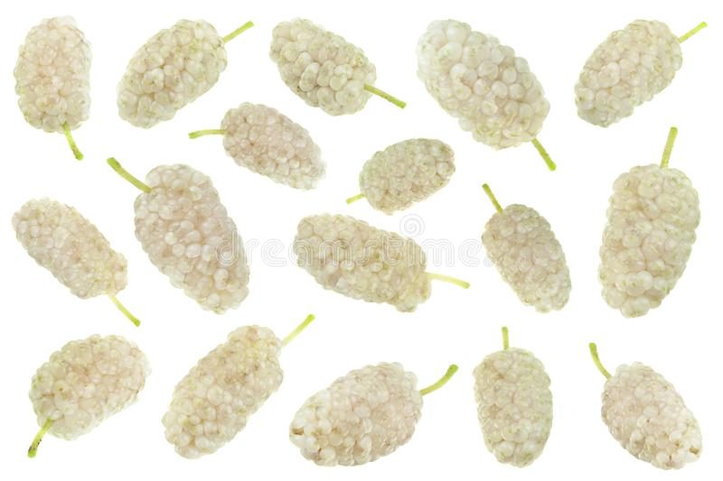 White Mulberry berry set isolated. White Mulberry berry collection closeup isolated on light background stock photography