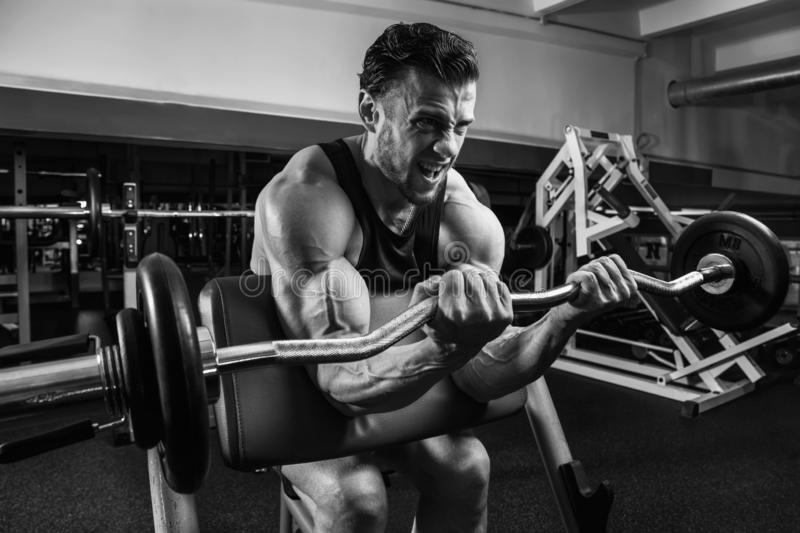 White Muscular man training his biceps in the gym by barbell BW royalty free stock images