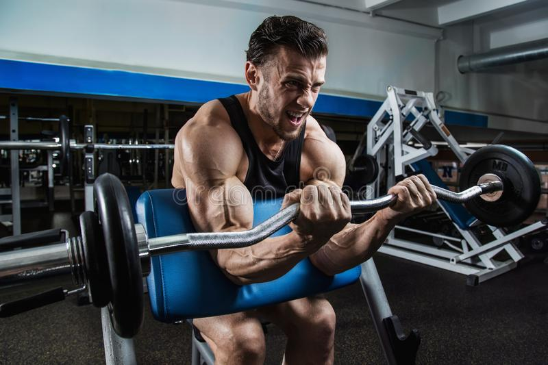 White Muscular man training his biceps in the gym by barbell stock images