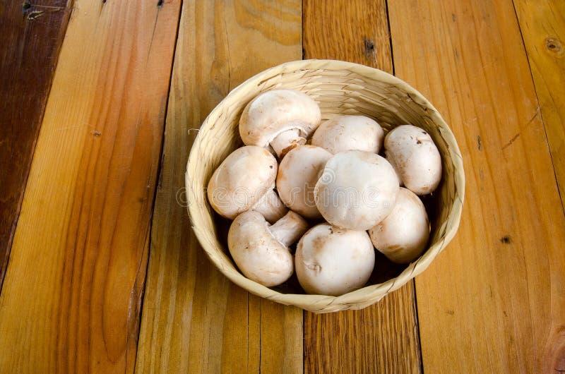 White mushrooms. On basket royalty free stock image