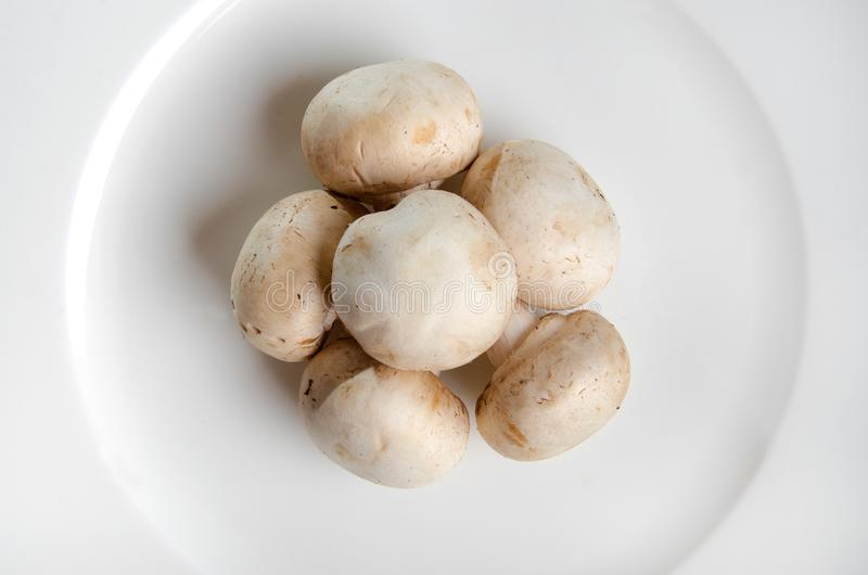 White mushrooms. On plate stock photo