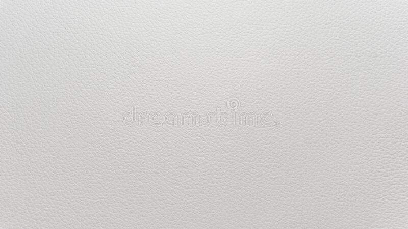 White natural leather texture macro, background for designers stock image