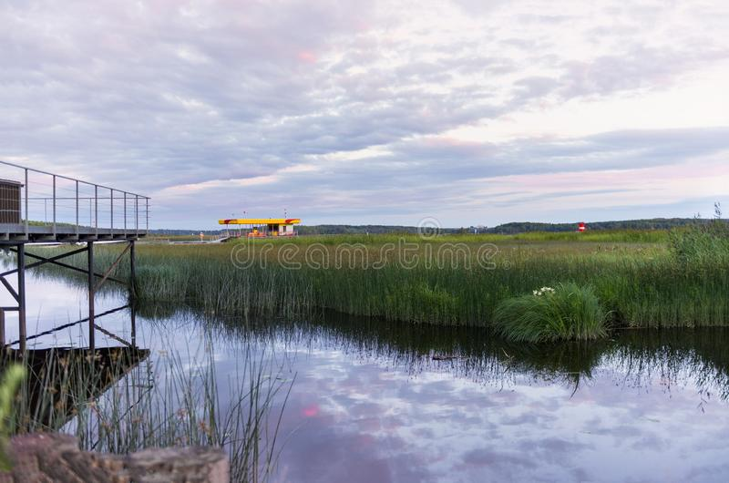 White nights on the Finnish Gulf, sky with lilac clouds over the water with reed. S, pier, night landscape stock image