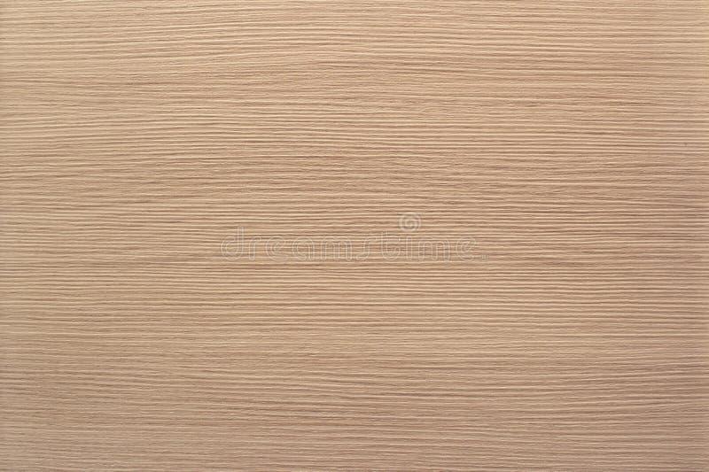 White oak texture background photo stock image