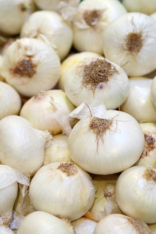 Free White Onion A In Grocery Royalty Free Stock Photo - 14382195