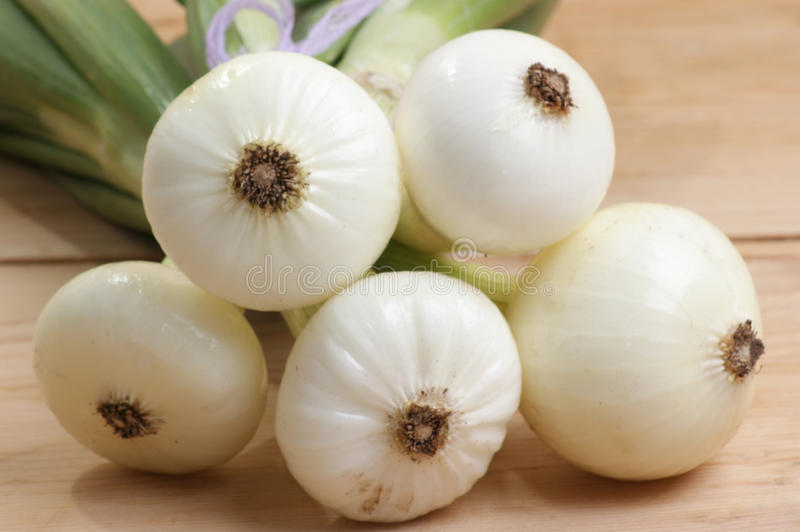 white onion on a timber board royalty free stock photo